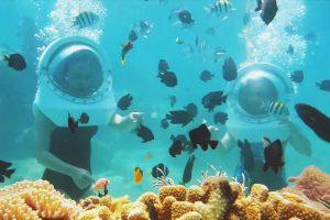 Tour Cù Lao Chàm - Đi bộ dưới biển